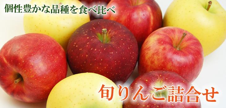 apple_top-sld.jpg