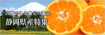 自慢できる地元の逸品 静岡県産特集