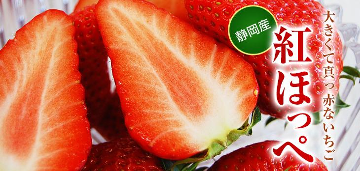 pho_mv_ichigo.jpg
